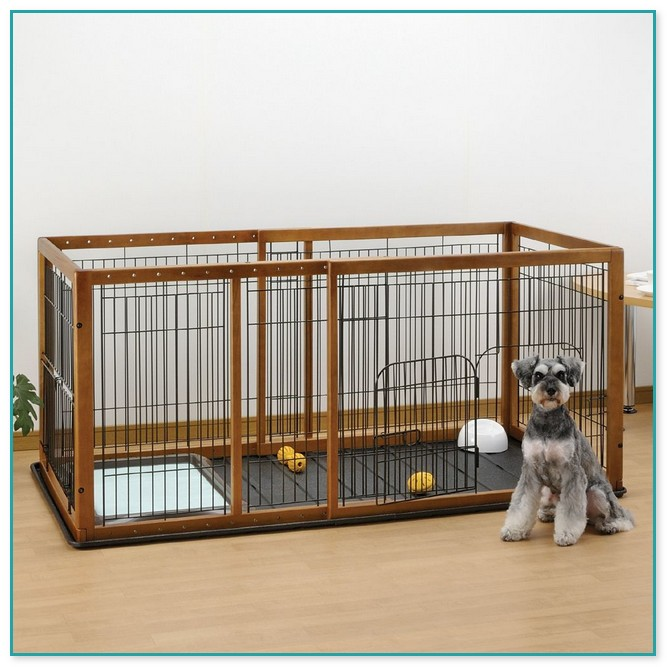Cheap Dog Fence Ideas
